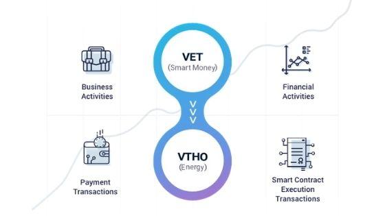 vechain-ecosystem